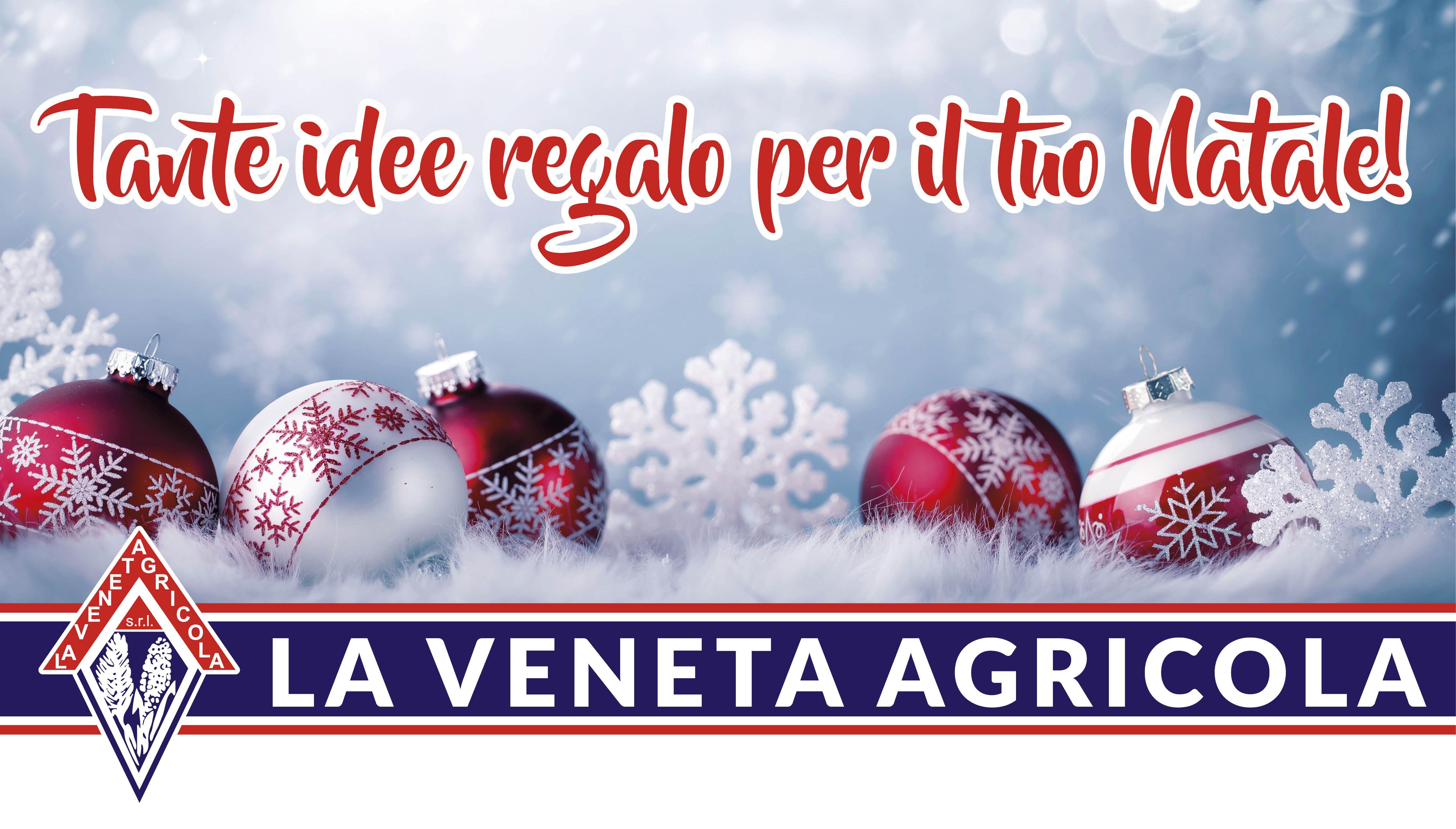 bed402d4b3 Tante idee regalo per Natale! - La Veneta Agricola